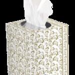 TORK PREM. FACIAL CUBE BOX UNIDADES